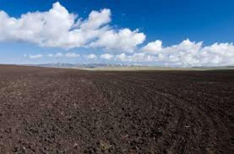 Produtor de Lucas do Rio Verde ganha dinheiro protegendo o solo