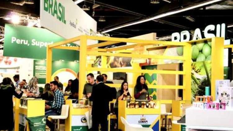 Brasil precisa avançar em informação e marketing para conquistar mercado global de orgânicos