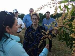 Governo inicia projeto que incentiva agricultura no Nordeste do país
