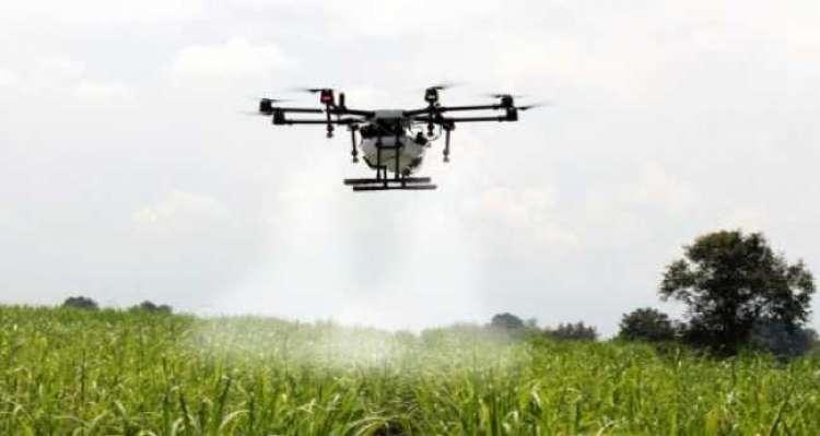 Uso de drones nas lavouras será regulamentado pelo Mapa