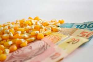 Agronegócio já se movimenta por alíquota menor na reforma tributária