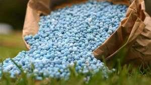 Desvalorização do Real anula queda dos fertilizantes
