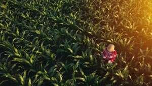 O futuro da agricultura é tema de debate
