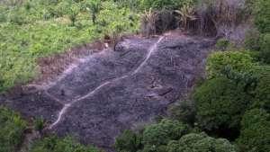 Desmatamento na Amazônia em junho equivale a duas vezes a área de Belo Horizonte