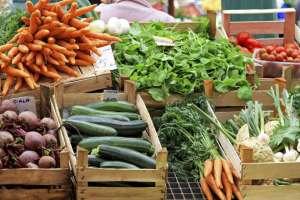 Preços globais de alimentos recuam em junho