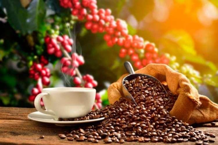 Cadeias internacionais impulsionam mercado europeu de cafés
