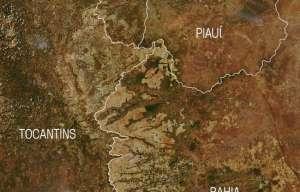 Ciência pode mudar perfil dos sistemas de produção de grãos no Cerrado brasileiro