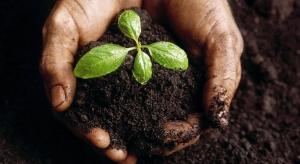 Brasil lança o maior projeto de solos do mundo, o PronaSolos