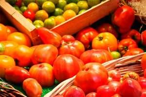 Agroecologia e consumo sustentável
