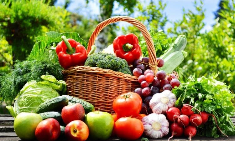 Qual é a diferença entre verdura, legume e hortaliça?