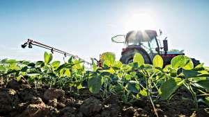 Governo indica manutenção de juros para pequenos e médios produtores