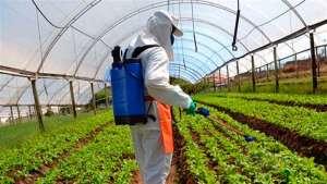 Pesquisa sobre descontaminação de vestimentas por agroquímicos entra na fase final
