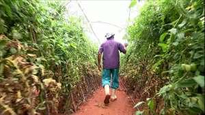 FPA pede retirada de trabalhadores rurais da reforma da Previdência