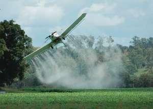 'Novos agroquímicos devem ser menos tóxicos e mais eficientes'