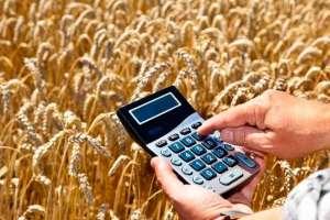 Contabilidade aplicada ao agronegócio enfrenta grandes desafios