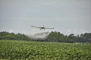 Novo sistema de registro de agrotóxicos é lançado