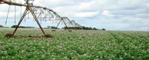 Você sabe de onde o Brasil importa fertilizantes?