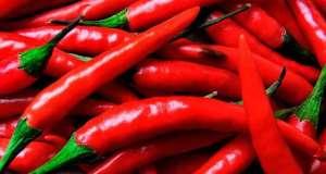 Brasil produz 75 mil toneladas de pimentas por ano