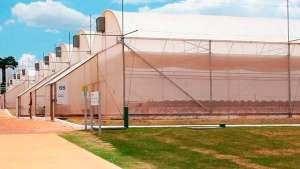 No verão, as estufas agrícolas precisam de climatização