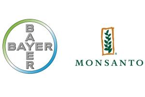 Fusão de Bayer com Monsanto ocorre suavemente, diz diretor