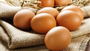 Produção de ovos de galinha sobe 8,6% e alcança recorde em 2018, diz IBGE