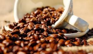 Cerimônia marca lançamento do programa de pré-aceleração Avança Café, numa parceria entre UFLA e Embrapa Café