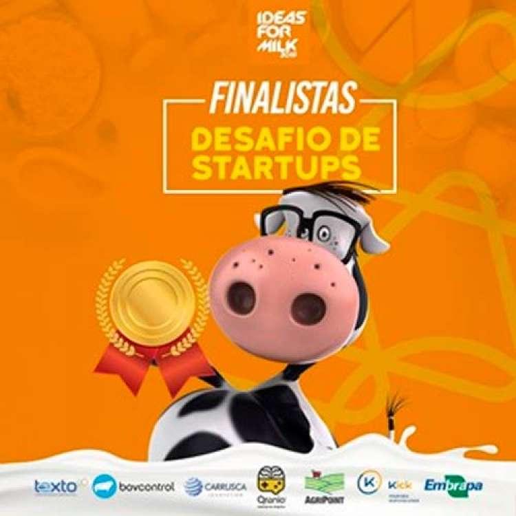 Oito soluções serão apresentadas na Final do Desafio de Startups da cadeia do leite