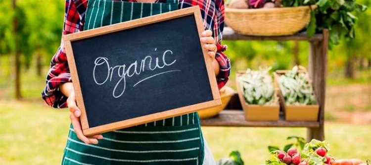 Demanda de consumo por alimentos saudáveis impulsiona produtos orgânicos no Brasil