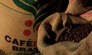 Café: saca campeã da BSCA é negociada por recorde de US$ 18,9 mil