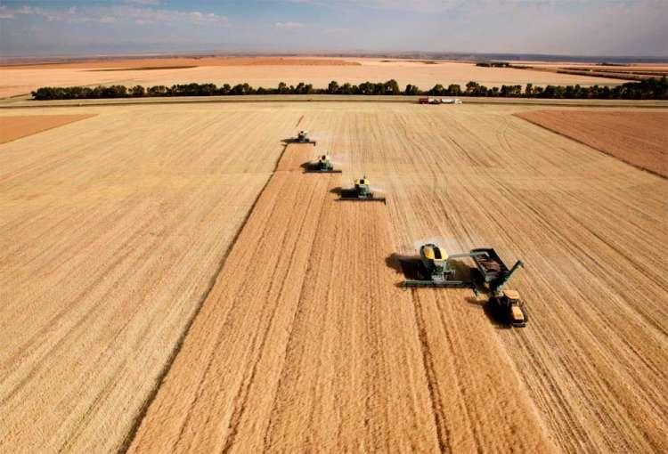 Cooperativismo no crédito rural chega a 17,2%