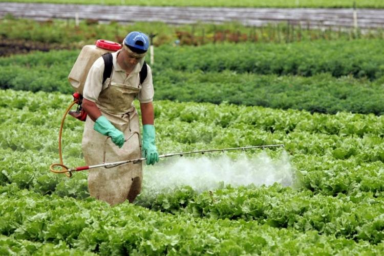 FAESP faz levantamento de defensivos agrícolas para pequenas culturas