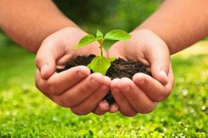 CNA defende prorrogação de convênio que reduz ICMS para insumos agropecuários
