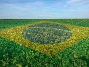 FPA e governo vão intensificar ações de promoção da imagem do agronegócio