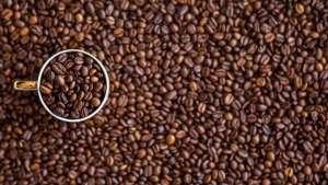 Produção de café arábica em 2019 tem faturamento bruto equivalente a 60% da safra de 10 anos atrás