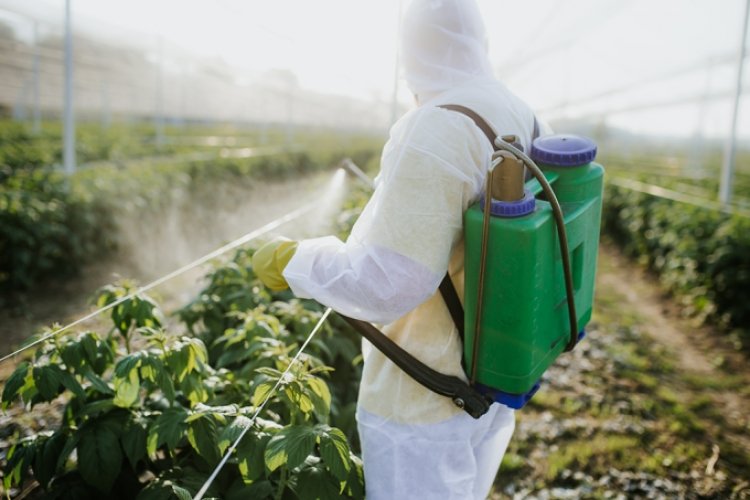 """Brasileiros combatem agrotóxicos nos rios com bactérias que """"comem veneno"""""""