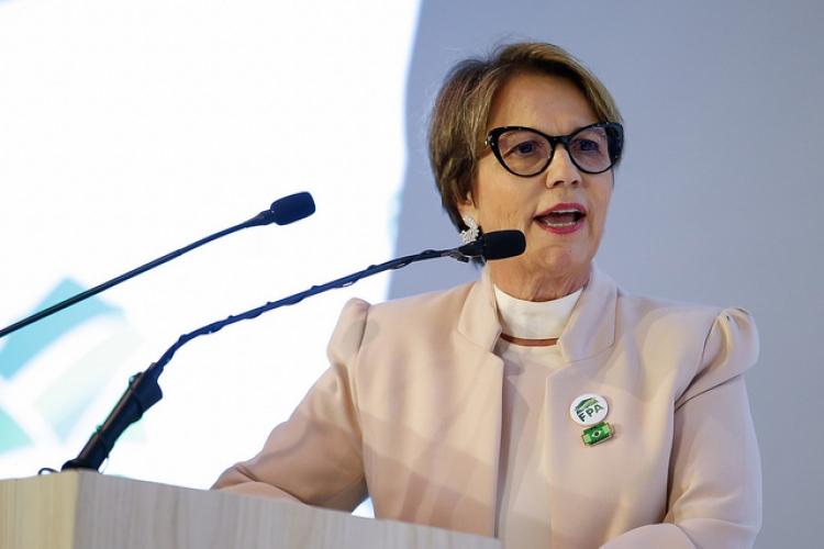 Tereza Cristina pede ao STF solução para disputa entre produtores e indígenas