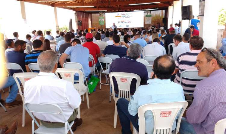 20 º Dia do Limão, é sucesso de público, em Pindorama - SP
