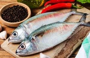 Primeira fase do Coma Mais Peixe impacta 10 milhões de pessoas