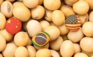 USDA prevê produção de soja dos EUA menor que expectativa do mercado