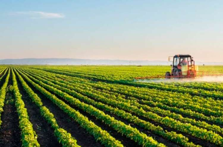 2020 deve ser positivo para o agro, dizem estimativas