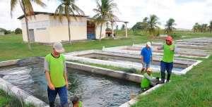 Extensão rural aquícola e pesqueira