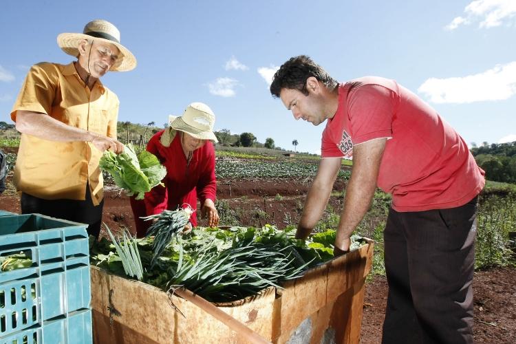 Governo publica lista de produtos da agricultura familiar com bônus em abril