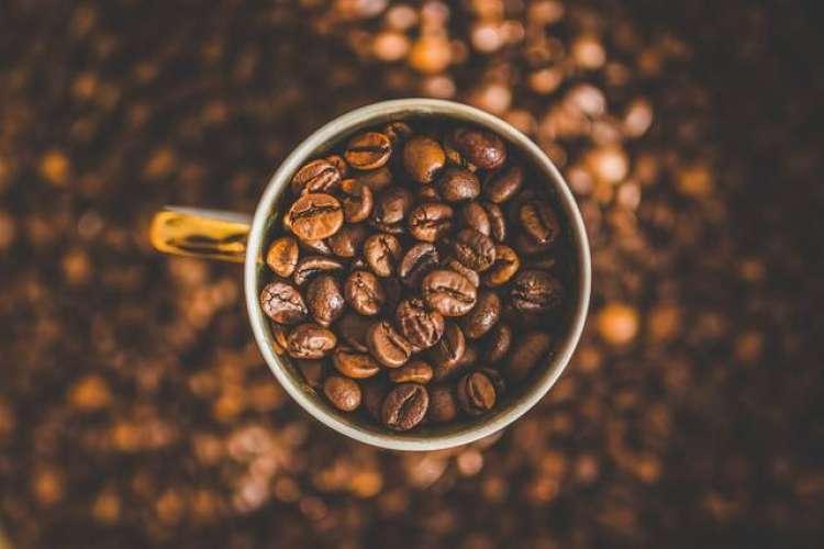 Café: tecnologia ajuda a melhorar rentabilidade