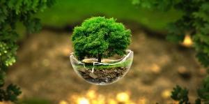 Clima e biodiversidade na equação do futuro