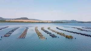 Peixe BR pede agilidade na análise de mais de 1.800 processos pendentes