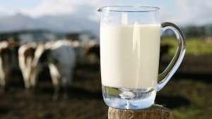 Cenário positivo para os produtores de leite