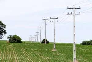 Produtor rural deve recadastrar unidades consumidoras até o fim do ano