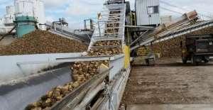 UE prevê produção de açúcar branco em 18,3 mi t em 2019/20
