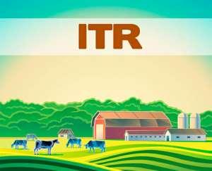 Já está aberto o prazo para declaração do ITR