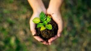 Sustentabilidade: o que estão pensando os europeus